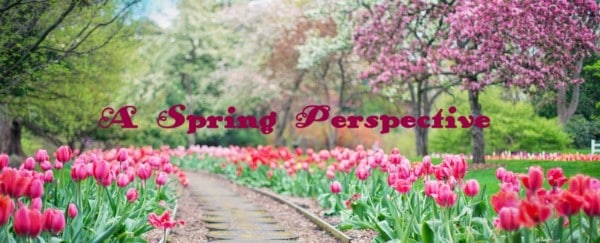 Closing Thoughts: A Spring Perspective