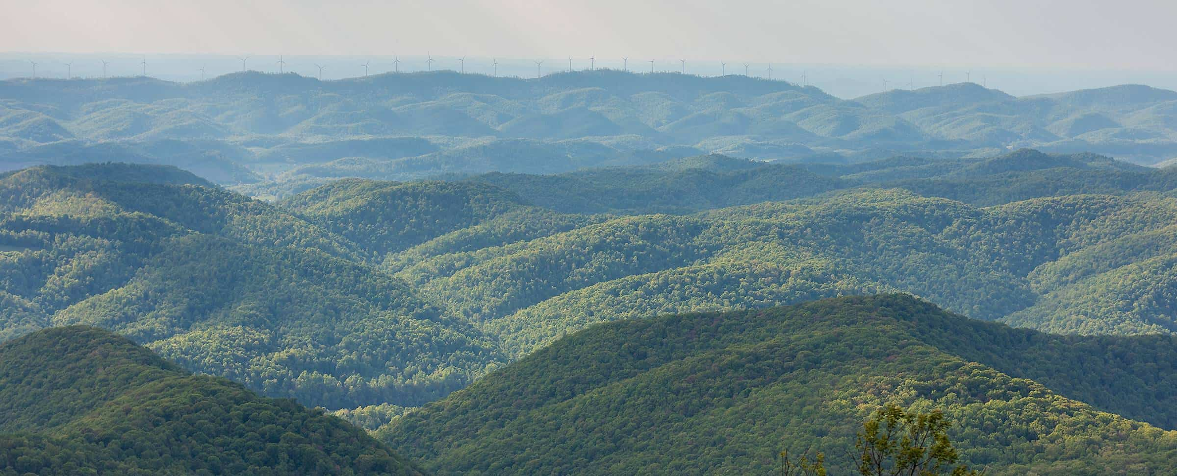 scenic forested hills with wind turbines on distant horizon
