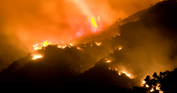 Project Wildfire: Contributing To The Gap Of Preventative Solutions To The Forest Fire Crisis